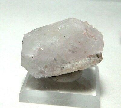 Beryl var. Morganite / Aquamarine (Min), (49er Pocket), Oceanview Mine, CA #mor5