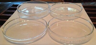 Scientific Lab Glass Pyrex Petri Bottoms 4