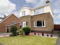 Superb Modern Detached House for Sale in Dundonald