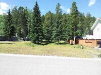 Large mountain lot in Blairmore (Crowsnest Pass)