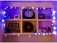 Blue and White snowflake fairy lights