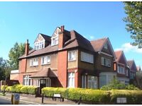 Gorgeous 3 bedroom flat in Willesden Green close to the tube & local amenities