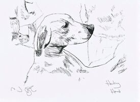 A4 Gloss Art Print of a Fox Hunting Hound. Delivery included.