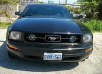 Mustang 08 Pony Package for Sale