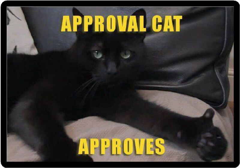 Funny Cat Humor Approval Cat Approves Refrigerator Magnet