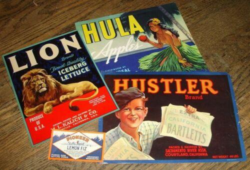 old crate box label LION ICEBERG LETTUCE Kalich Watsonville Ca Hustler Hula Soda