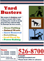 YARD CARE/GRASS/LAWN CUTTING/POWER/RAKING/SNOW/ROTOTILLING/LEAF