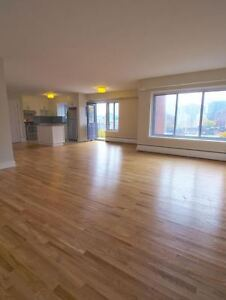 Completely renovated bright unit - Downtown, beautiful views
