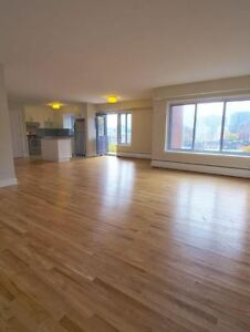 Luxury - Downtown (McGill) - Great Views - Professional building