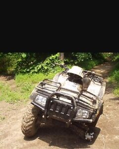 Wanted ATV projects or smashed