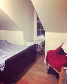 Lovely Double Room in Gorgeous Flat!