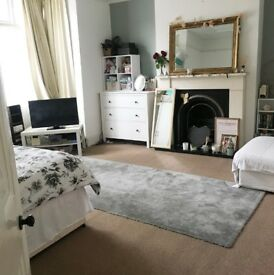 Lovely Spacious Double Room in Chiswick area - 3 month short let