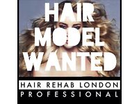 MODEL REQUIRED - Hair Extensions Specialist - Mobile across London and Award Nominated!