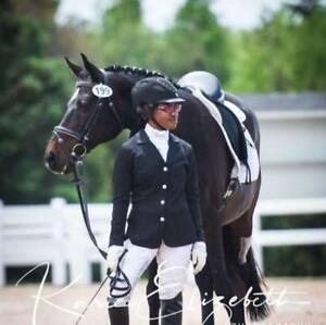 Part Board or FullLease (18 year old  dressage school master)