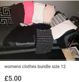 Womens clothes bundle size 12