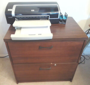 "HP 9800 Colour Ink Jet 11x17"" Printer & Stand"