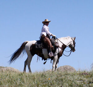 Western riding and Horsmanship