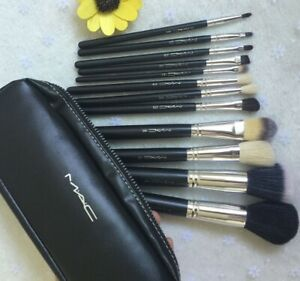 MAC COSMETIC MAKE-UP BRUSHES $65- Set of 12 With Case BRAND NEW