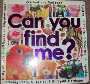 Large Seek and Find Board Book