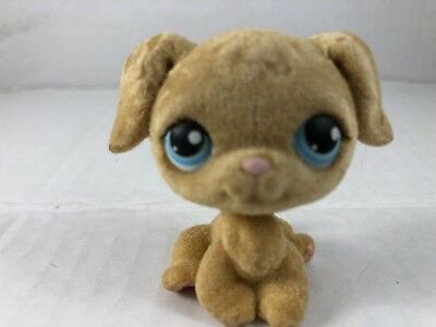 Littlest Pet Shop #320 Flocked Fuzzy Golden Retriever Dog