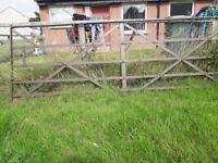 Large vintage wrought iron gate