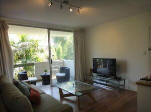 Large room for rent in bright and airy Drummoyne apartment Drummoyne Canada Bay Area Preview
