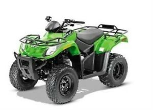 2016 arctic cat 300