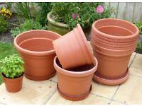 Large Plastic Plant Pots Plus Saucers