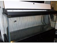 Fish tank (4ft/122cm) 200l capacity, Stand & Hood included.