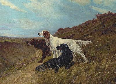 GORDON SETTER ENGLISH SETTER AND IRISH SETTER CHARMING DOG GREETINGS NOTE CARD