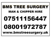 BMS Tree Surgery Surgeon Chipper Hire Stump Grinding Watford Bushey Croxley Rickmansworth