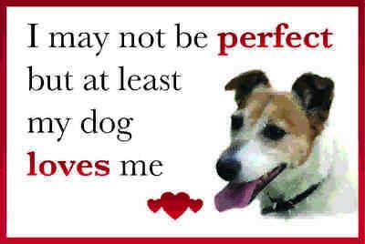 Funny My Dog Loves Me JACK RUSSELL Dog Vinyl Car Van Sticker Pet Animal Lover