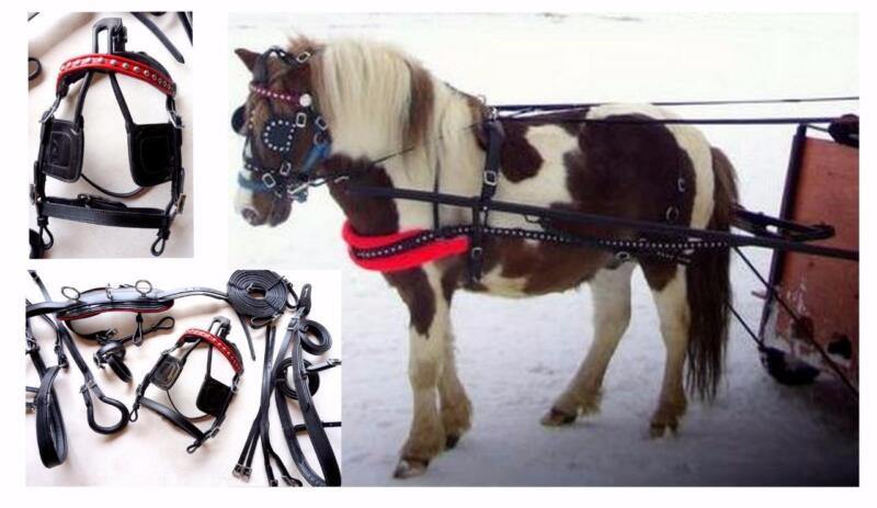 Black PLAIN RED BB  Leather Mini Sh Pony Driving show training cart harness NEW