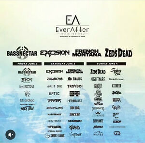 3 EverAfter Music Festival Wristbands