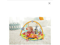 Baby playmat, Fisher Price Moonlight Meadow Deluxe Gym.