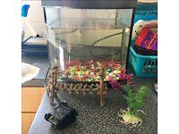 Fish tank. Pump. Pebbles. Bridge. Plants. Food