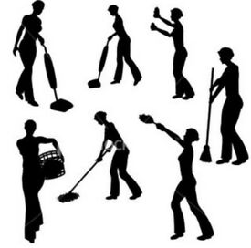 Elizabeth's cleaning services Cambuslang - Uddingston Areas