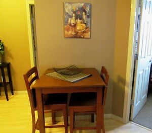 FULLY FURNISHED  ONE  BEDROOM CONDO  AVAILABLE NOV 1 Edmonton Edmonton Area image 2