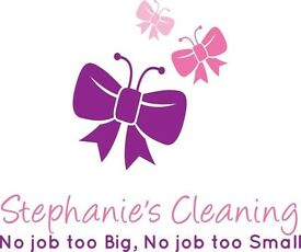 Domestic Cleaners and Carpet Cleaning