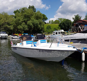 Sunbird Sea-Core 150DC with Johnson 60 hp outboard with trailer