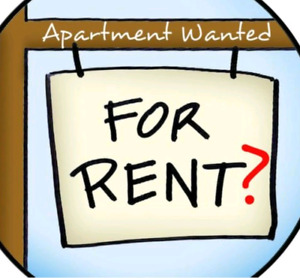 Couple Looking For Basement Or Apartment