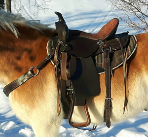 Chocolate trail/ barrel saddle set