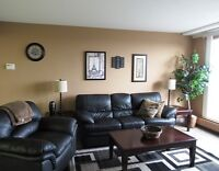 ONE BEDROOM FURNISHED  CONDO -AVAILABLE FEB 1st