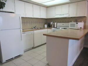 Checkmate - Furnished 2 Bed - Short Term Availabilities - SCR