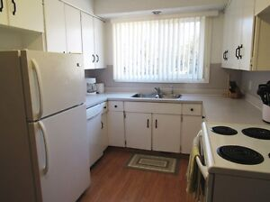 Air Conditioned Main Floor of 3 Bedroom House