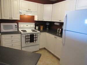 EAST SIDE FULLY FURNISHED CONDO FOR RENT