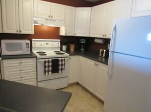 EAST SIDE FULLY FURNISHED CONDO FOR RENT-SEPT 1st