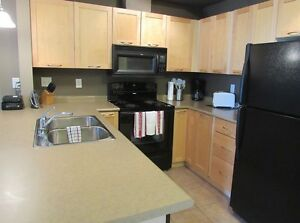 FULLY FURNISHED  ONE  BEDROOM CONDO  AVAILABLE NOV 1 Edmonton Edmonton Area image 1