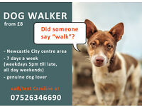 Newcastle City Centre Dog Walker - £8