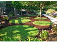 Garden service & soft landscaping ,gardener , landscaper